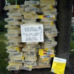 Sign:  Dear Bell & Yellow Pages. We all have a thing called 'the Internet' Now Please Stop Wasting Stuff.